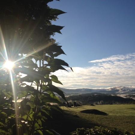 Sept dawn